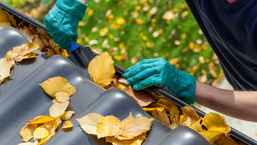 Cleaning leafs out of gutters on a house